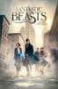 Fantastic Beasts Film 1